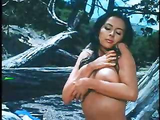 Kay Parker Compilation Vol 1  Full Movie